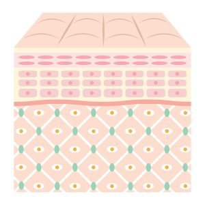 Воздействие на кожу