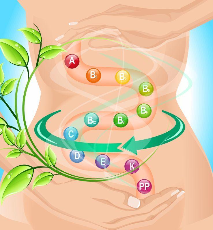 Очищение и оздоровление кишечника