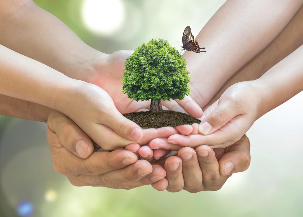 День защиты мест обитания