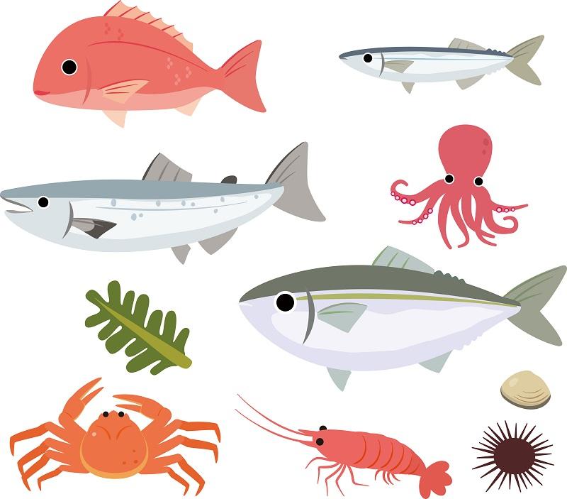 польза морской рыбы для зрения